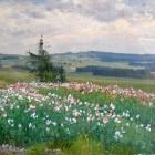 Josef Jambor - Makové pole